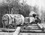 Logging in Kalama, Washington area, old growth logs, circa 1880-1899
