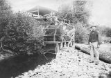 Fish hatchery, Kalama, Washington, circa 1895