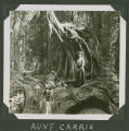 Aunt Carrie with large old growth tree, Whatcom County, Washington, circa 1900
