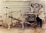 Denison children and goat cart, Pomeroy, Washington, 1929