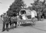Safeway covered wagon float, Ritzville, Washington, September 2, 1939
