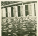 Shipherd's Hot Springs, people in pool